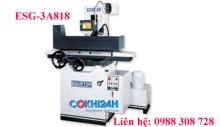 Máy mài phẳng equiptop ESG-3A818